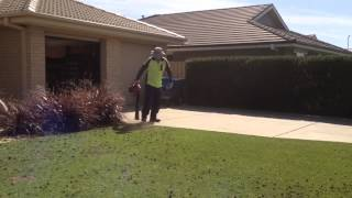 Cylinder Lawn Mowing ( Prepare Lawn ) Part 4/6