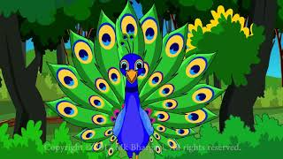 Peacock Rhymes for kids