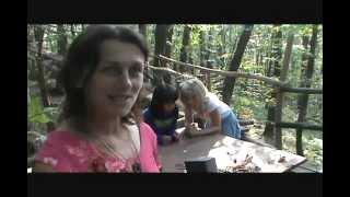 Singing Plants at Damanhur | Des plantes qui jouent de la musique