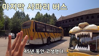 에버랜드 사파리 버스가 없어 지는 거 아셨나요?? 마지막 날 마지막 버스 [오브리더]