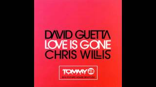 David Guetta - Love is Gone (Tommy B. Deejay 2015 Future House Bootleg)