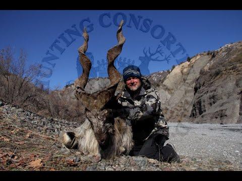 Hunting Tajikistan: Marco Polo Sheep And Bukharan Markhor Hunting In Tajikistan 2019