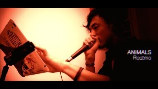 【LIVE】REATMO - Animals (Maroon 5) : BEATBOX & VOCAL loops