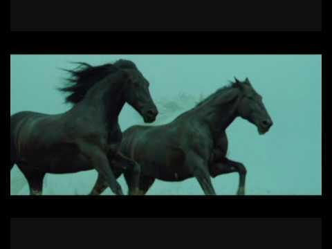 Black horses - Now we are free (Lisa Gerrard)