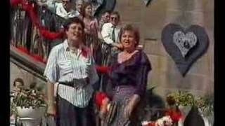 Lustige Musikanten in Prag - Amselpolka - Černý kos