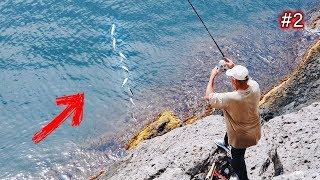 2 10 РЫБ ЗА РАЗ местные ловят рыбу в море Морская рыбалка в Крыму ловля ставриды Новый Свет