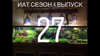 Интерактивный аквариумный туризм Сезон 4 Выпуск 27 - Рай для буцефаландр