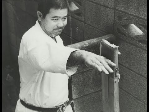 Morio Higaonna - Iron Fists of Okinawa