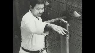 Morio Higaonna - Iron Fists of Okinawa