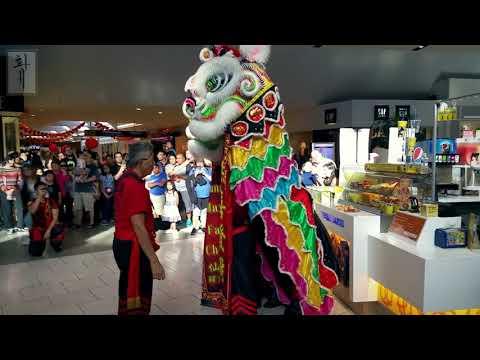Chinese New Year Event   Lion Dance   Westfield Santa Anita Mall   Promenade