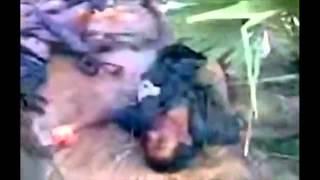Sri Lanka's Killing Field Part 3 - YouTube.flv
