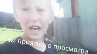 "Моя Немецкая Овчарка по имени ""Кума"""