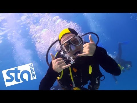 Exploring The Great Barrier Reef with Jacob Dixon | STA Travel