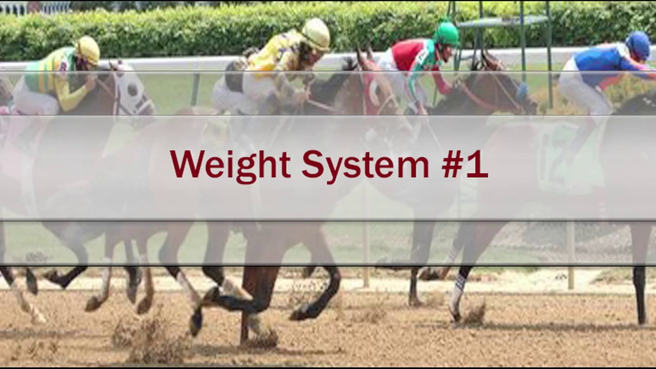 Free Horse Racing Handicapping System that Works   Weight ...