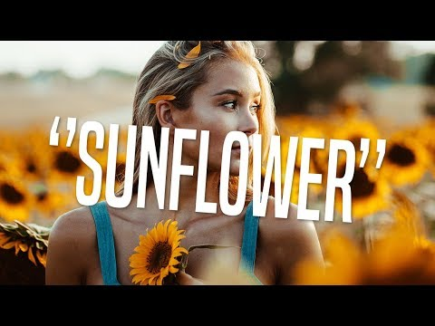 Zouk Instrumental 2018 ''Sunflower'' [Kizomba Type Beat]