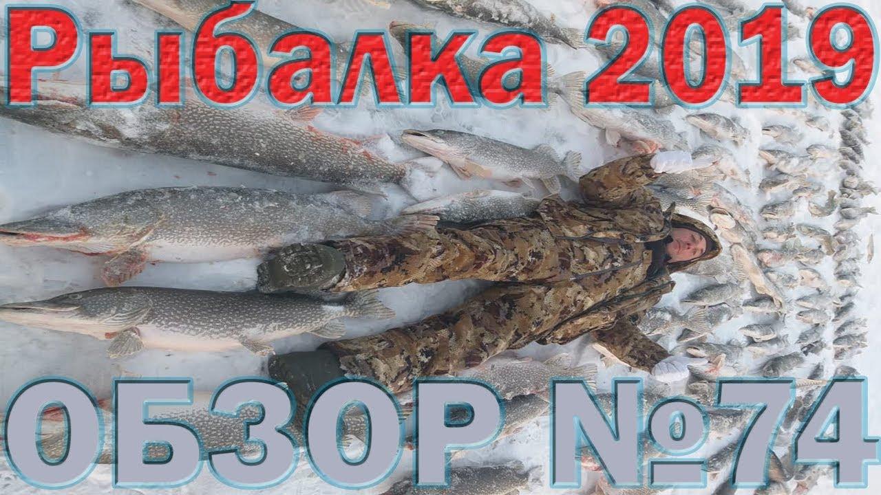 Рыбалка в Январе 2019 Обзор 74 Рыбалка в Казахстане