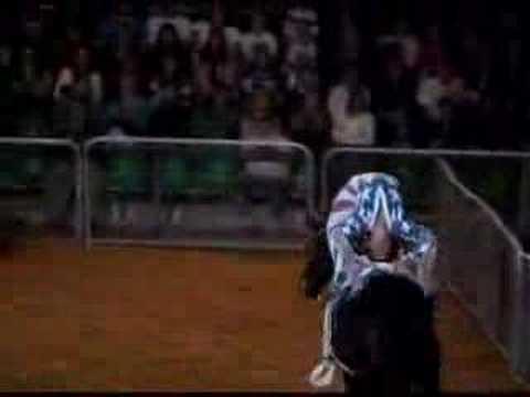 Kansas Trick Riding Roman Lasso Cavalia