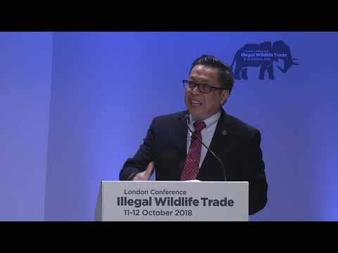 Illegal Wildlife Trade conference London 2018 Day 2:  Reducing demand