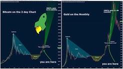 Viral GOLD vs BITCOIN CHART!