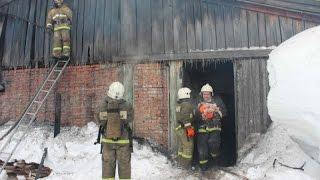 При пожаре на частной свиноферме томские пожарные спасли около 150 животных