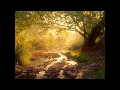 My Soul Finds Rest (Psalms 62)