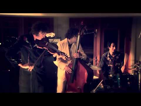 The Sadies - live on 'The Neighbors Dog' house concert TV series (excerpt 2)