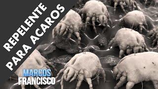 Repelente Caseiro Para Ácaros - #comofazermarcos
