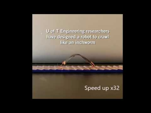 This soft inchworm robot could lead to new smart clothing and morphing airplane wings