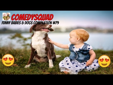 Dogs and Babies are Best Friends-Funny Babies & Dogs Compilation #79