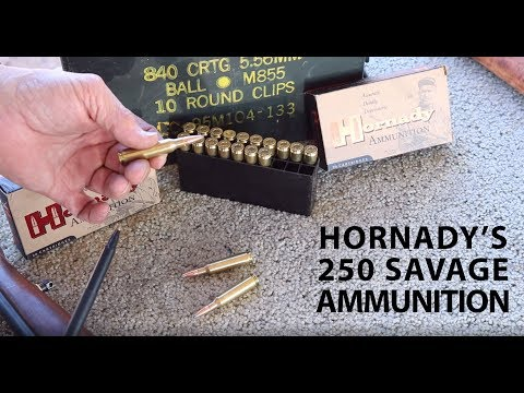 Hornady's New Loading for the 250 Savage: Tested in a Vintage Savage Model 99