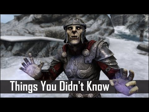 Skyrim: 5 Things You Probably Didnt Know You Could Do - The Elder Scrolls 5: Secrets (Part 15)
