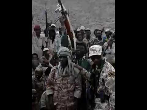 FACT mouvement politico militaire / Tchad 🇹🇩 2016