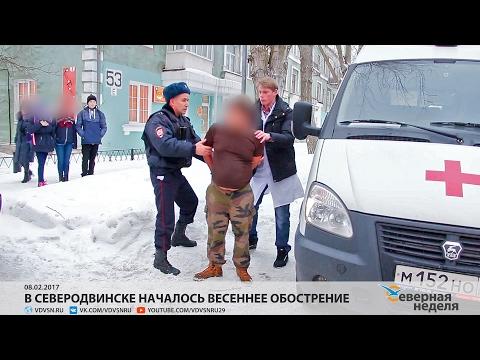 Бесплатные объявления в Архангельске — Губерния