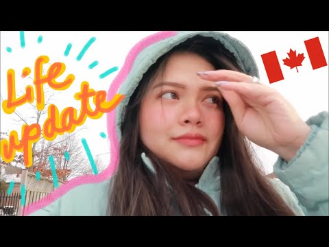Life Update + How to apply to get a job in Canada (London Ontario) | trinakaye