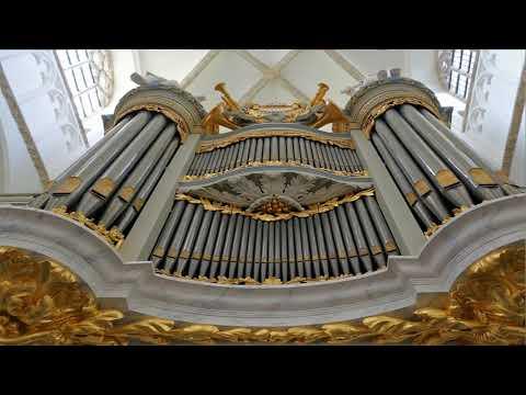 14e zomerconcert. Twee jongen organisten bespeelden het van Dam Orgel in Tholen