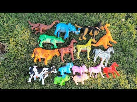 ช้าง ม้า วัว ควาย ไดโนเสาร์ นอนบนหญ้าแล้วลุกไปเดินบนถนน elephant cow buffalo horse pig dinosaur dog