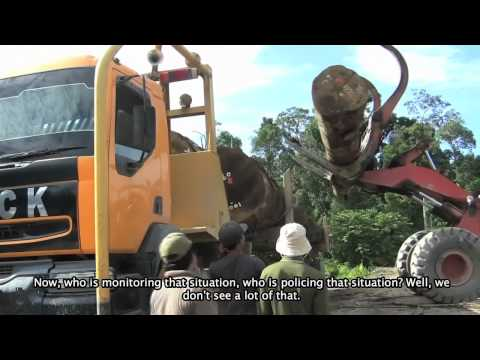 """Cari Hutan - In Search of Forest"" - Part 6 - Deforestation in Indonesia"