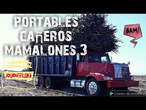 Camiones cañeros mamalones de Veracruz y todo mexico