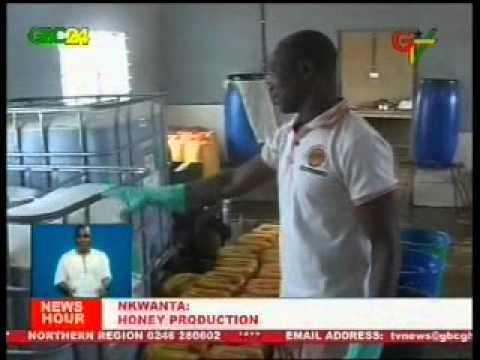 Nkwanta: Honey Production