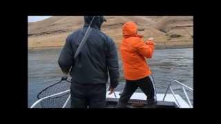 snake river steelhead fishing round 2