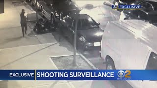Exclusive Video Shows Wild Bronx Police Shootout