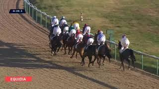Vidéo de la course PMU PRIX DU TEMPLE DE VENUS