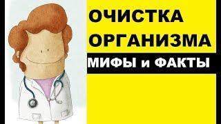 Мифы и факты об очистке организма (детокс)