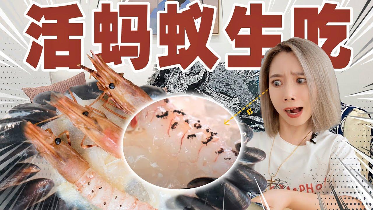 我用野格灌醉蚂蚁,然后吃了他们!| Michelin Star
