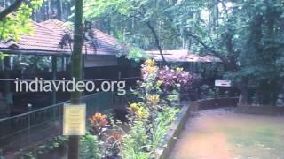 Sahakari Spice Farm, Ponda, Goa