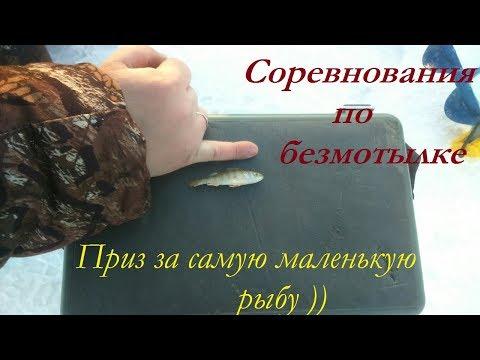 видео: Соревнования по безмотылке. Приз за самую маленькую рыбу!