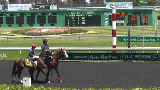 2014 Campanile Stakes at Golden Gate Fields