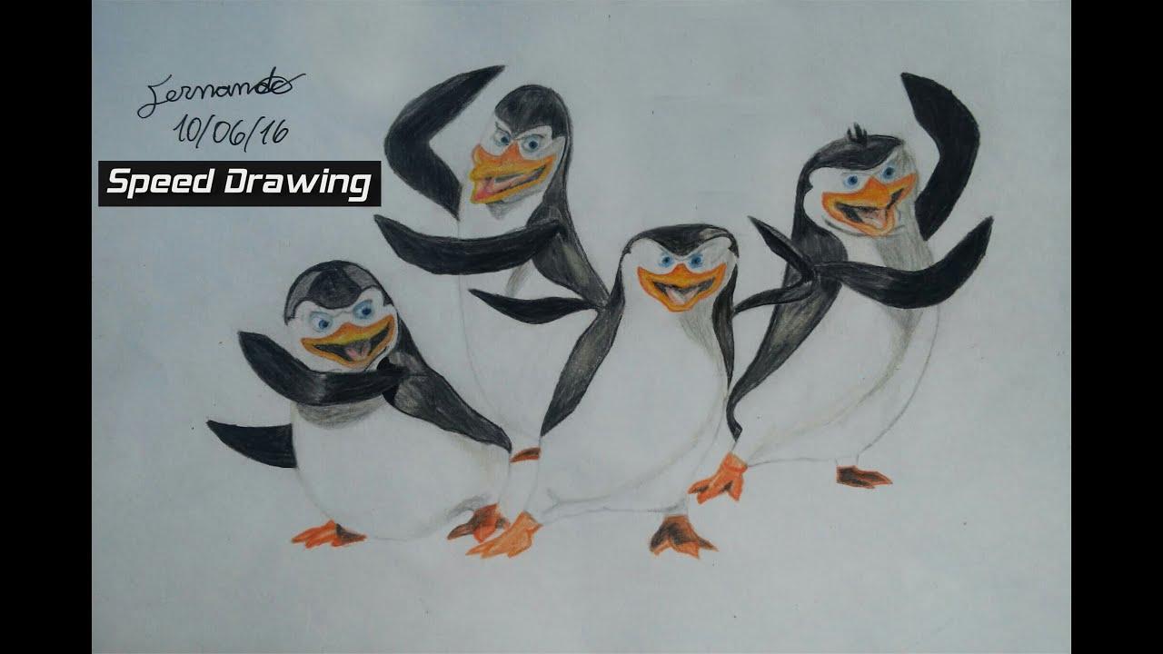 Desenho Rapido Os Pinguins De Madagascar Fernando Speed Drawing