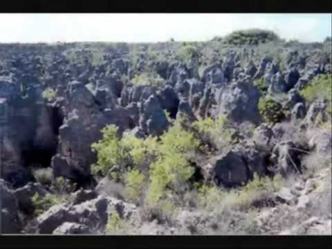 Nauru tourism.wmv
