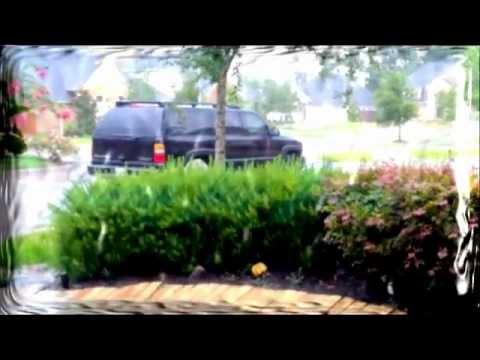 Jump for Jesus ( Action Song ) - Steve Kuban
